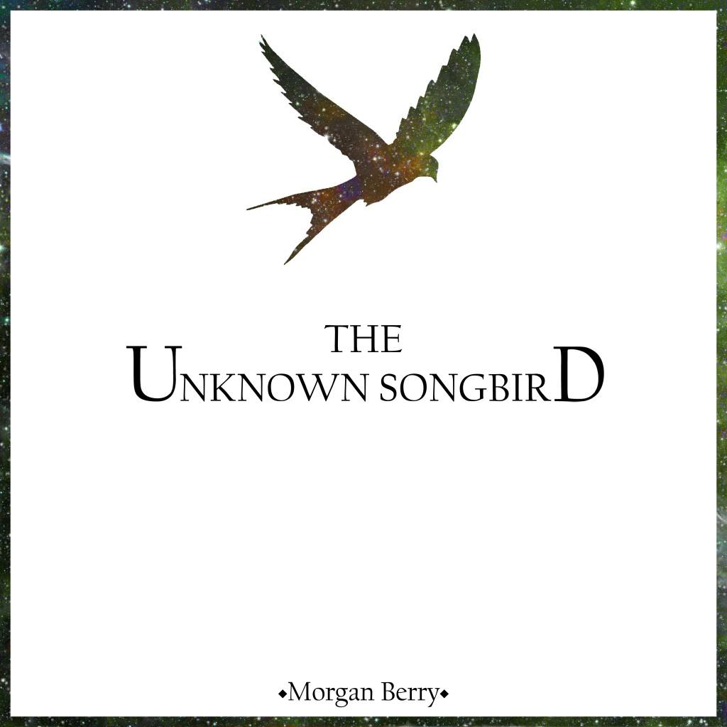 Unknown SongBird